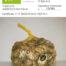 sacchetto-di-lumache-da-gastronomia-helix-aspersa-maxima-1kg