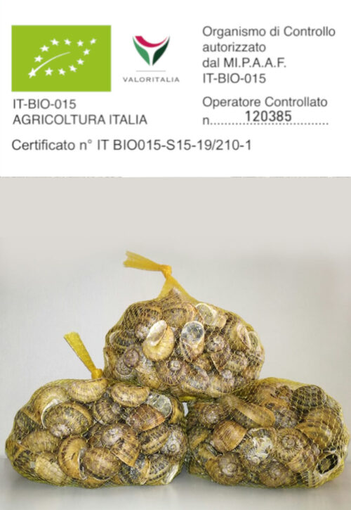 sacchetto-5kg-Helix-Aspersa-Maxima-lumaca-tenuta-pra-de-oro-creme-cosmetiche-alla-bava-di-lumaca-300x284